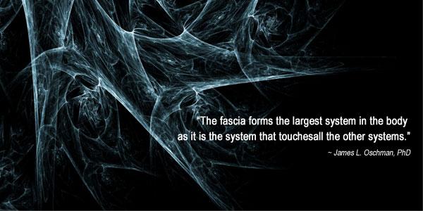 Fascia-Quote